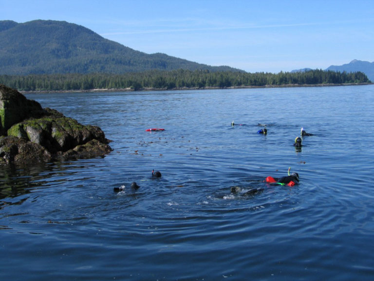 SNORKELING IN ALASKA Join us, and discover why snorkeling in Alaska is unlike anywhere else in the world. Thanks to long summer days and a lack of glaciers in this area water temperatures reach a surprising 65 degrees in mid-summer.